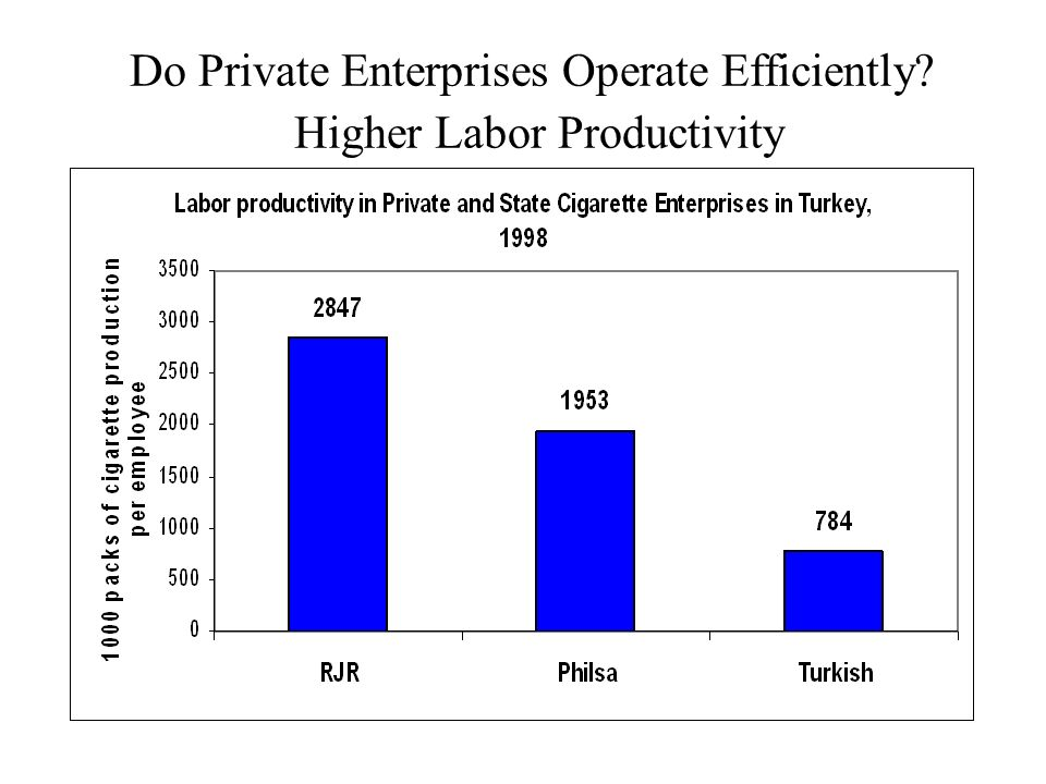 Do Private Enterprises Operate Efficiently Higher Labor Productivity