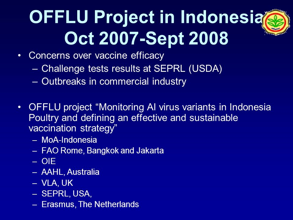 OFFLU Project in Indonesia Oct 2007-Sept 2008 Concerns over vaccine efficacy –Challenge tests results at SEPRL (USDA) –Outbreaks in commercial industry OFFLU project Monitoring AI virus variants in Indonesia Poultry and defining an effective and sustainable vaccination strategy –MoA-Indonesia –FAO Rome, Bangkok and Jakarta –OIE –AAHL, Australia –VLA, UK –SEPRL, USA, –Erasmus, The Netherlands
