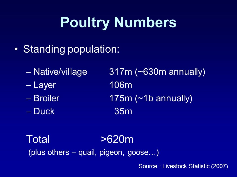 Poultry Numbers Standing population: –Native/village317m (~630m annually) –Layer106m –Broiler175m (~1b annually) –Duck 35m Total >620m (plus others – quail, pigeon, goose…) Source : Livestock Statistic (2007)