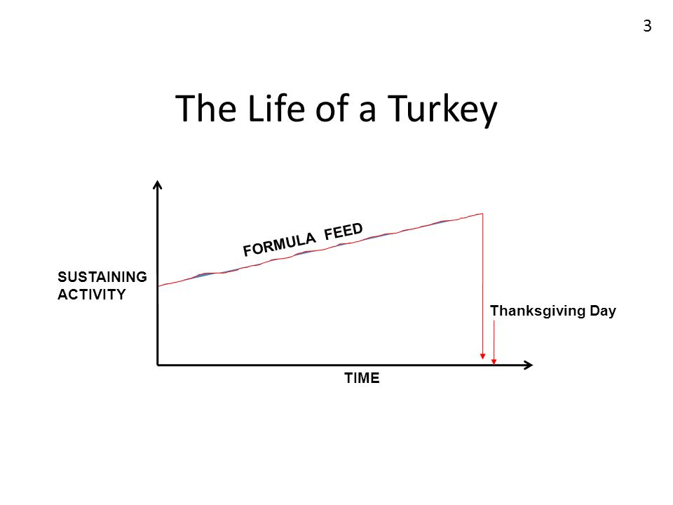 The Life of a Turkey TIME SUSTAINING ACTIVITY Thanksgiving Day FORMULA FEED 3