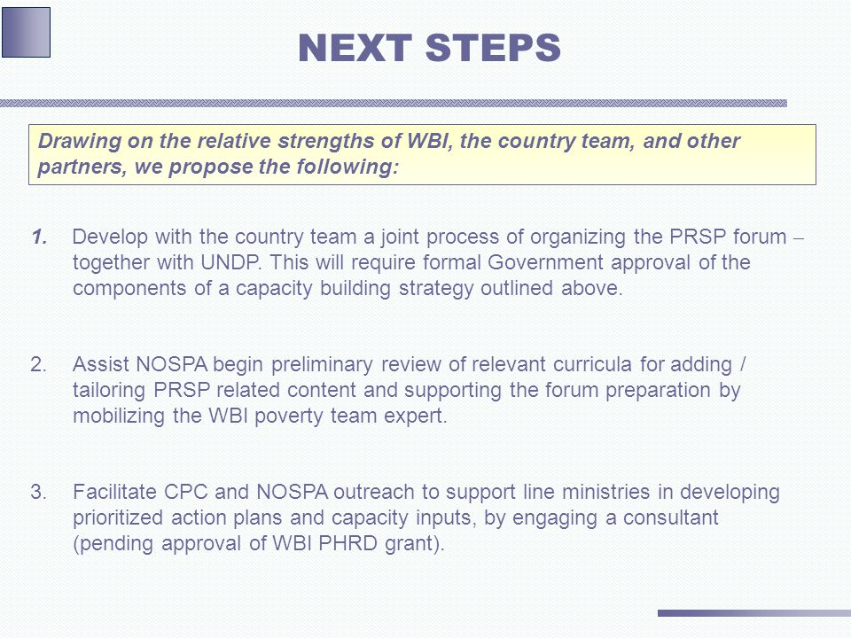 1. Develop with the country team a joint process of organizing the PRSP forum – together with UNDP.