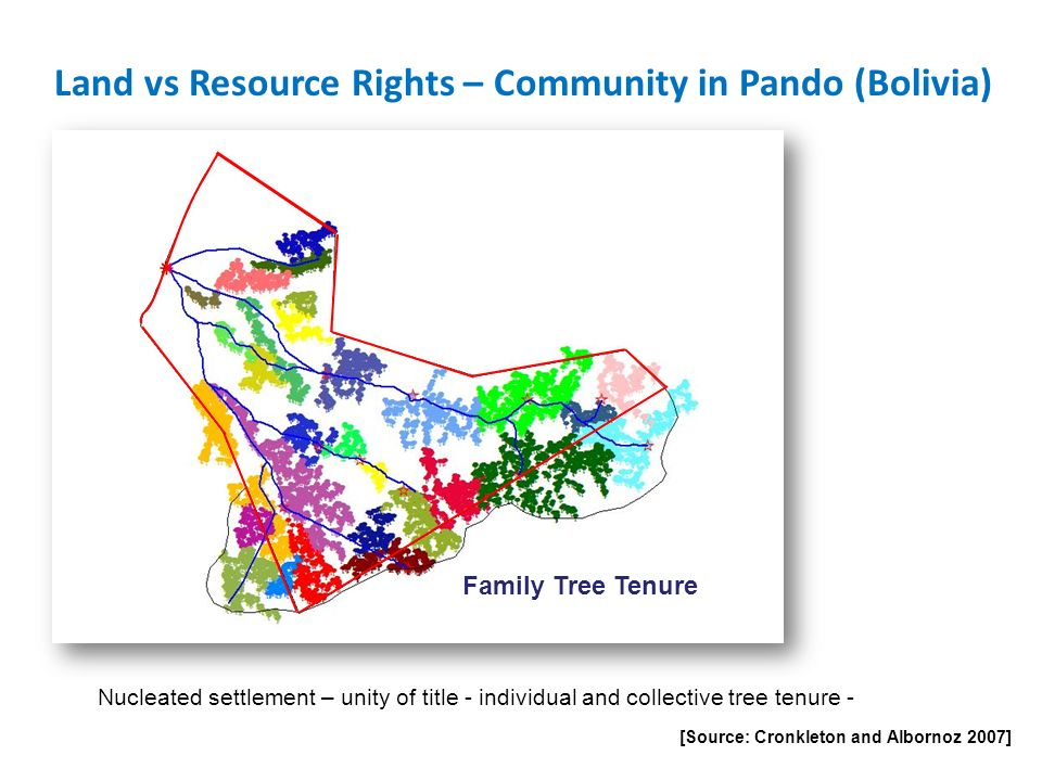 Land vs Resource Rights – Community in Pando (Bolivia) [Source: Cronkleton and Albornoz 2007] Family Tree Tenure Nucleated settlement – unity of title