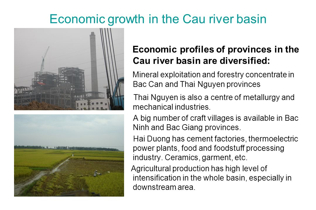 Economic growth in the Cau river basin Economic profiles of provinces in the Cau river basin are diversified: Mineral exploitation and forestry concentrate in Bac Can and Thai Nguyen provinces Thai Nguyen is also a centre of metallurgy and mechanical industries.