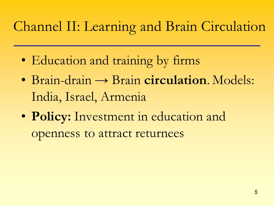 5 Education and training by firms Brain-drain Brain circulation. Models: India, Israel, Armenia Policy: Investment in education and openness to attrac