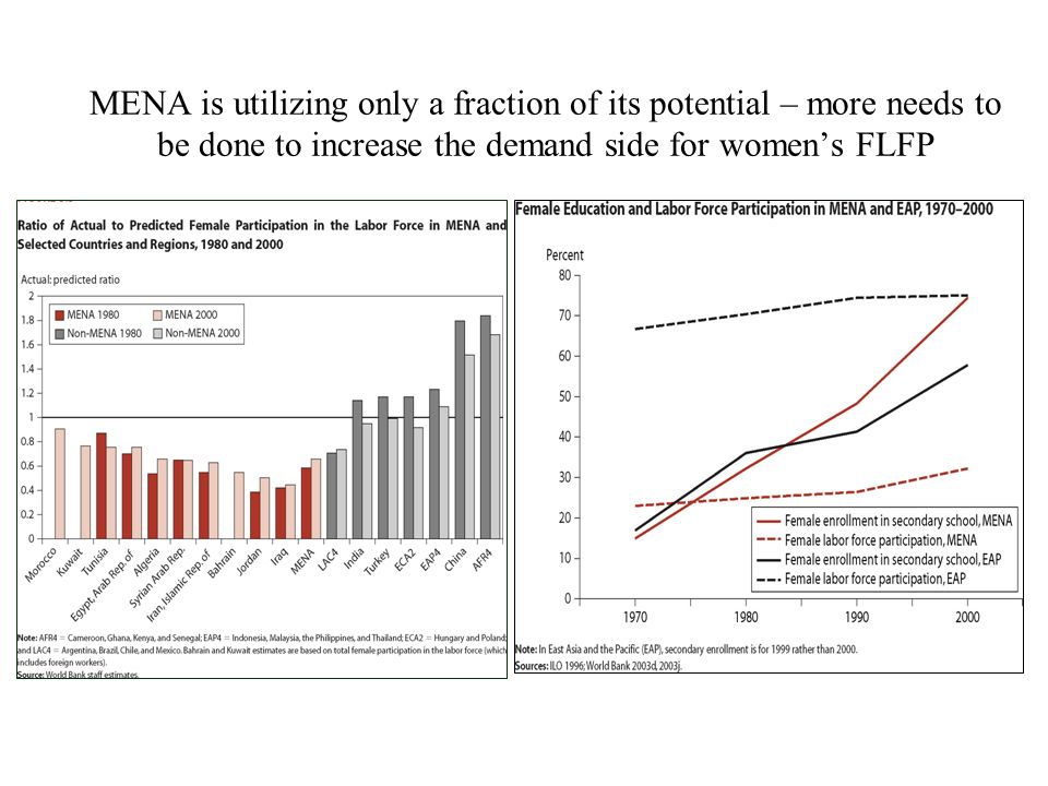 MENA is utilizing only a fraction of its potential – more needs to be done to increase the demand side for womens FLFP