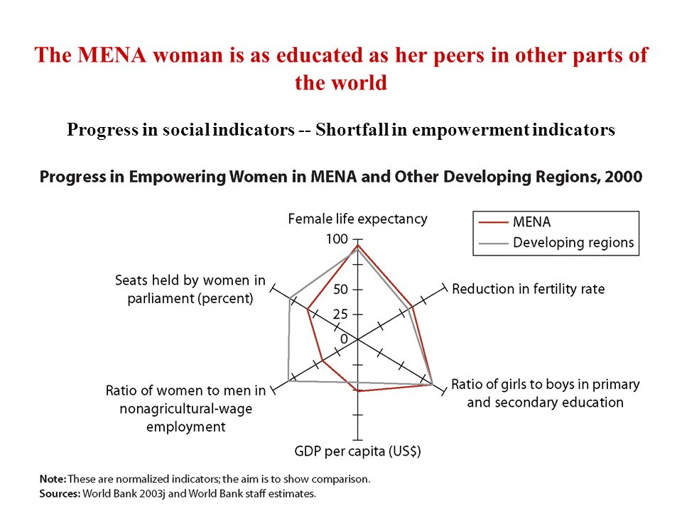 The MENA woman is as educated as her peers in other parts of the world Progress in social indicators -- Shortfall in empowerment indicators