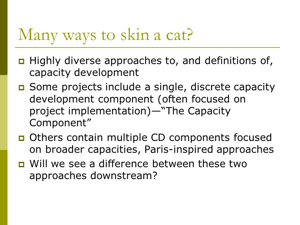 Many ways to skin a cat? Highly diverse approaches to, and definitions of, capacity development Some projects include a single, discrete capacity deve