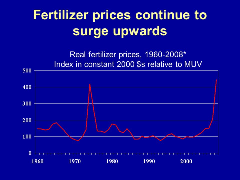 Fertilizer prices continue to surge upwards Real fertilizer prices, 1960-2008* Index in constant 2000 $s relative to MUV