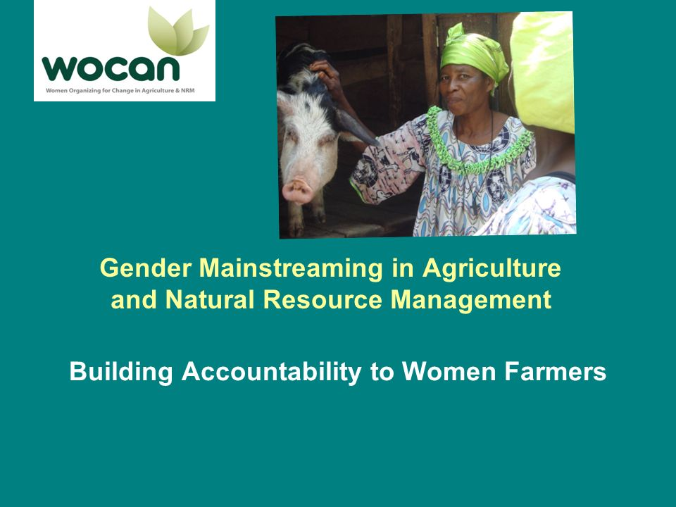Women farmers constraints Impacts of environmental degradation Limited Assets (land, labor, financial, product markets) Gender relations –Unequal power –Patriarch Social constraints –Limited education levels –Limited mobility