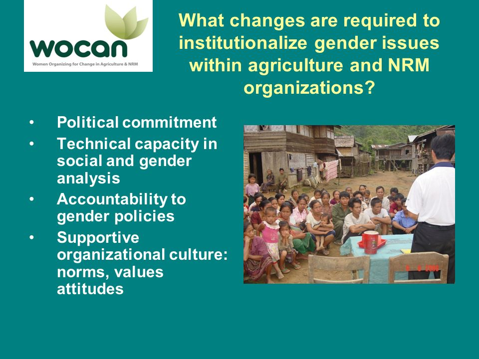 What changes are required to institutionalize gender issues within agriculture and NRM organizations.