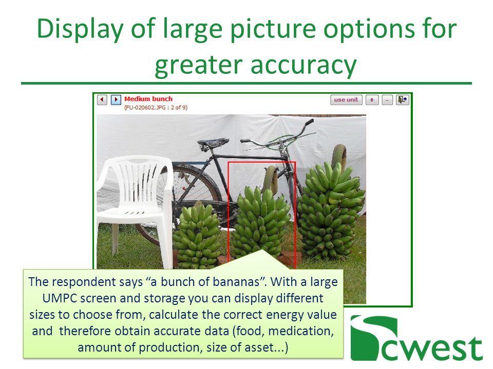 Display of large picture options for greater accuracy The respondent says a bunch of bananas.