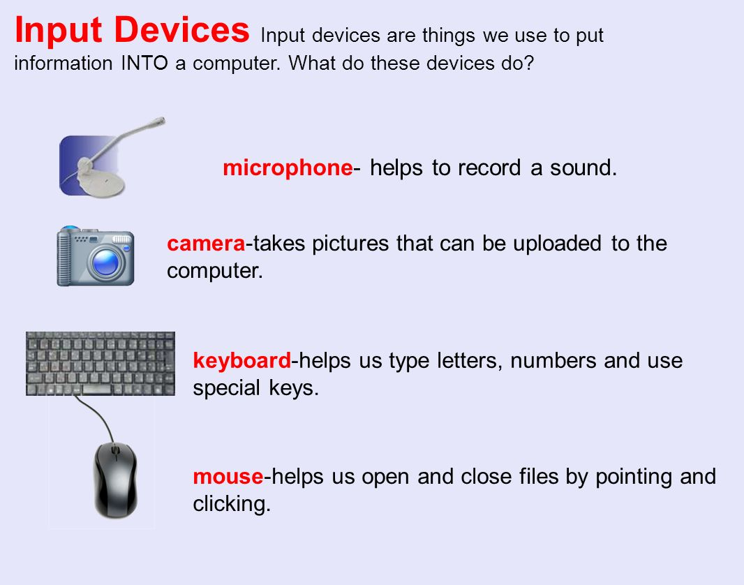 What is the name of the computer parts.Which are the input devices.