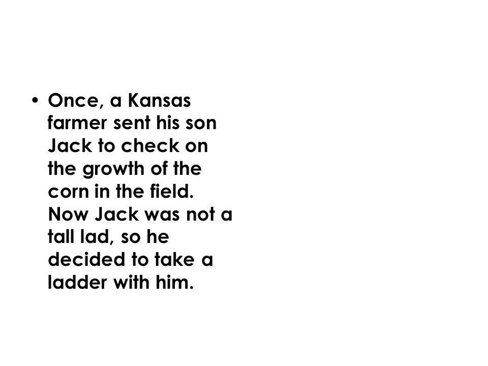 Once, a Kansas farmer sent his son Jack to check on the growth of the corn in the field.