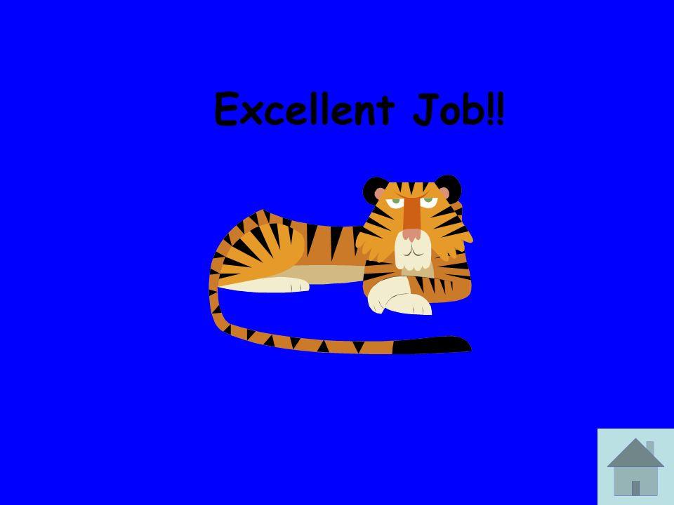 Excellent Job!!