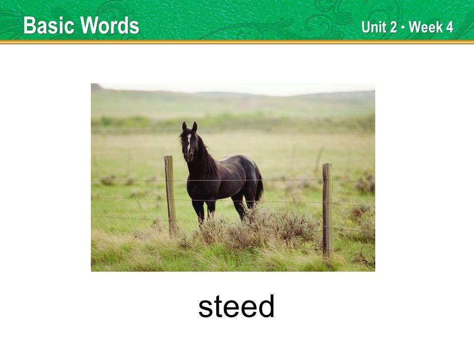 Unit 2 Week 4 steed Basic Words