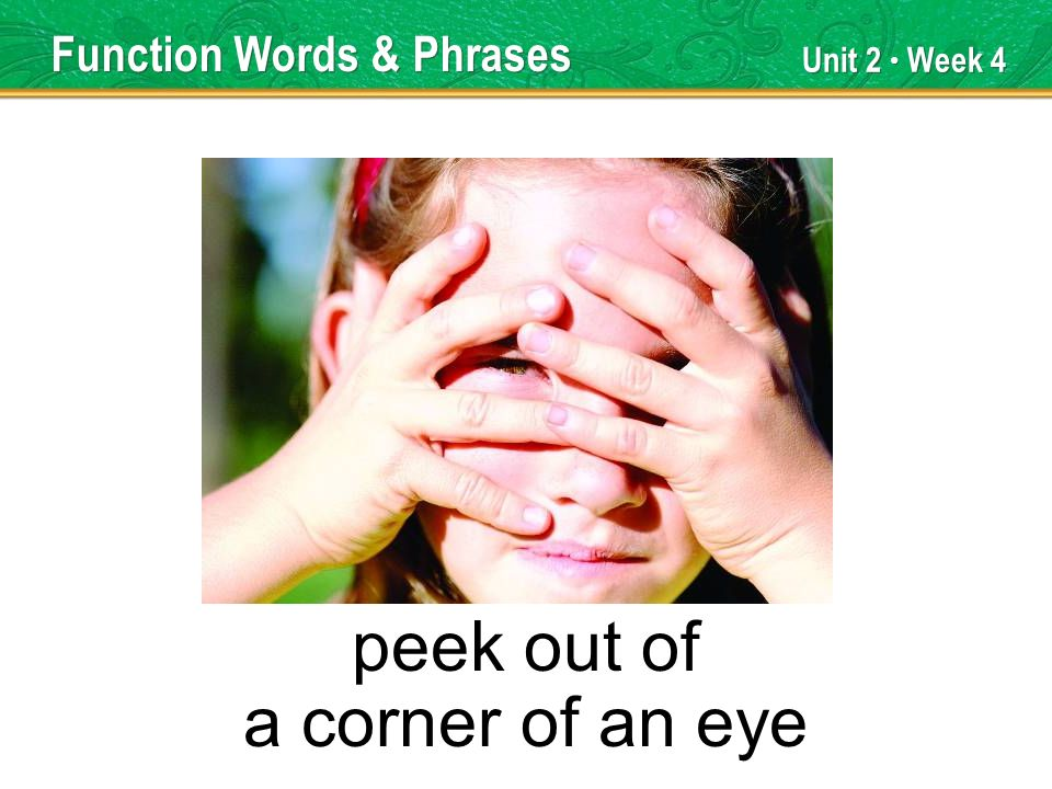 Unit 2 Week 4 peek out of a corner of an eye Function Words & Phrases
