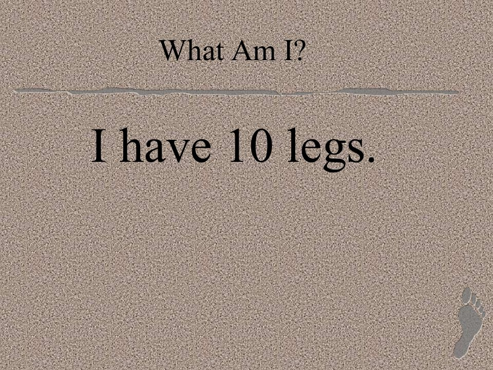 What Am I I have 10 legs.