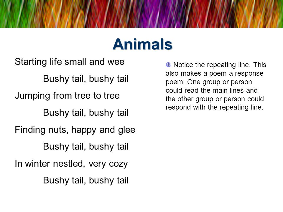 Animals Starting life small and wee Bushy tail, bushy tail Jumping from tree to tree Bushy tail, bushy tail Finding nuts, happy and glee Bushy tail, b