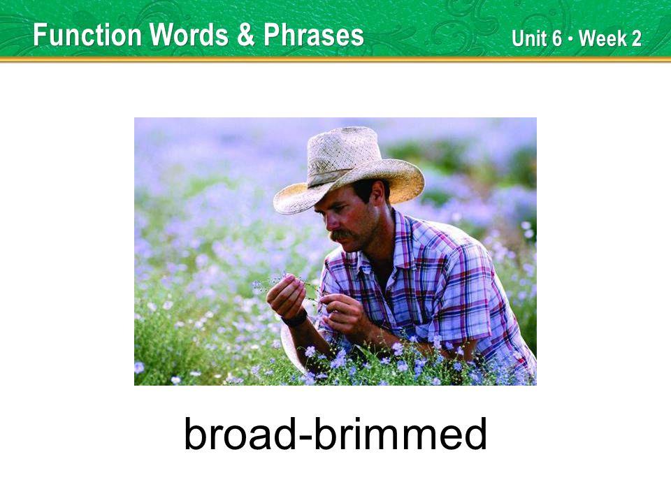 Unit 6 Week 2 broad-brimmed Function Words & Phrases