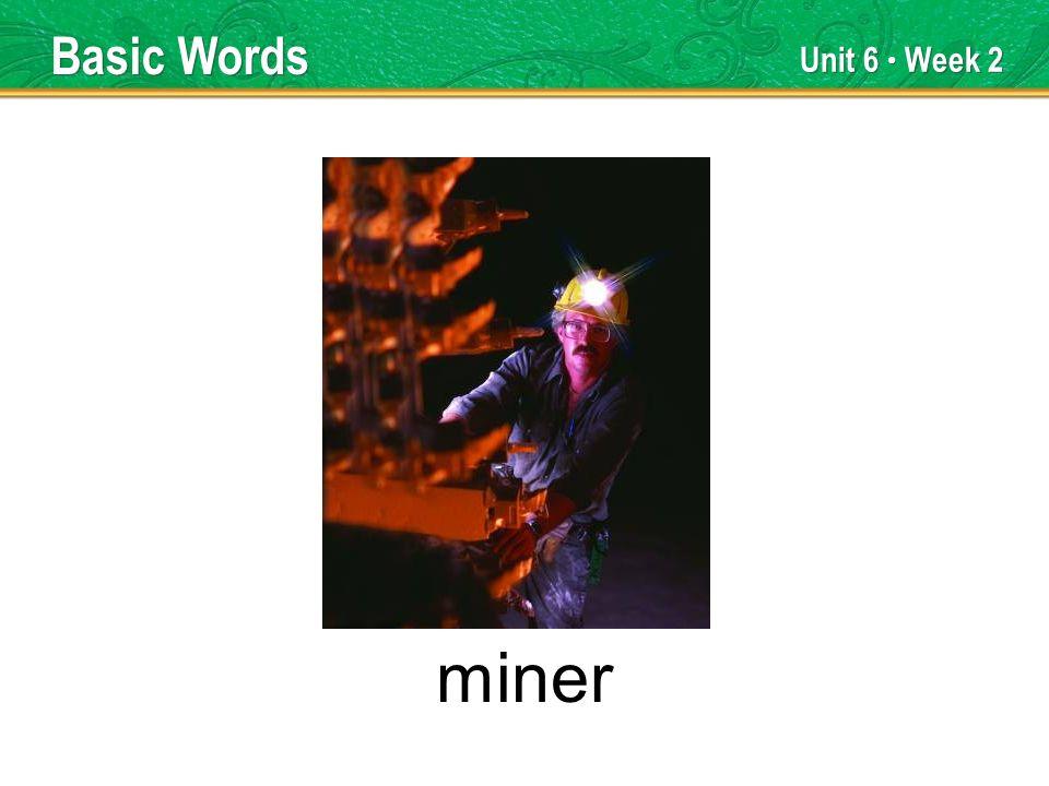 Unit 6 Week 2 miner Basic Words