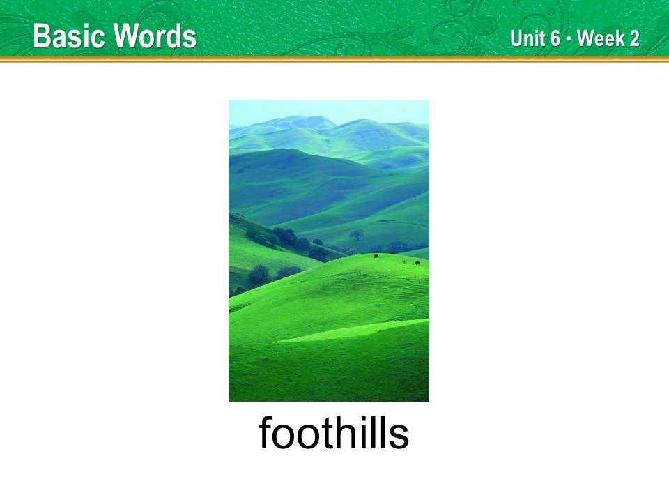 Unit 6 Week 2 foothills Basic Words