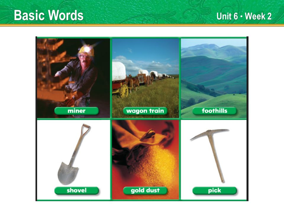 Unit 6 Week 2 Basic Words