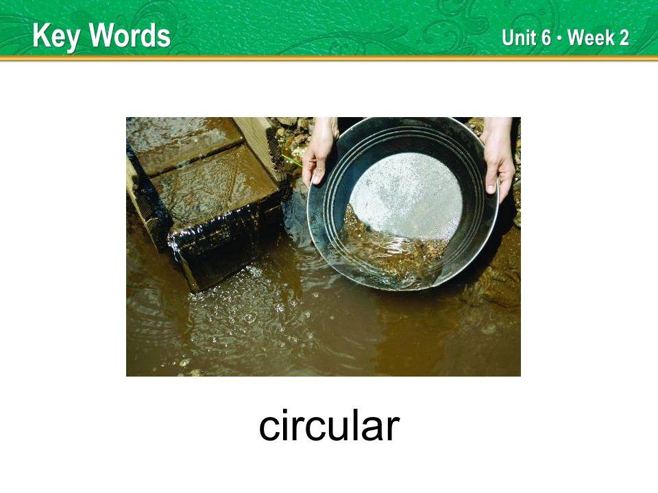 Unit 6 Week 2 circular Key Words