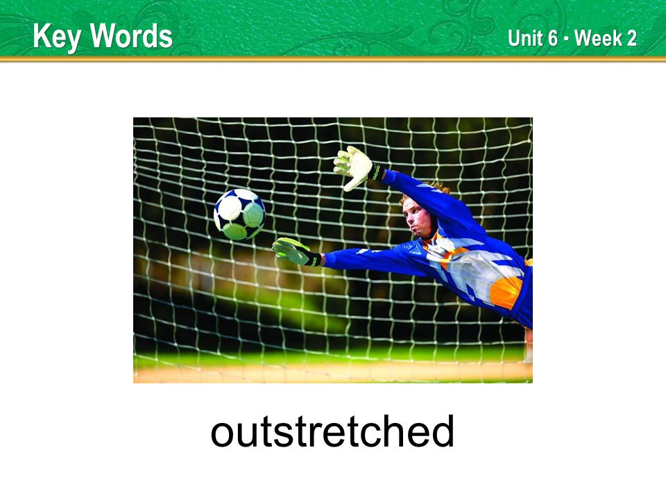 Unit 6 Week 2 outstretched Key Words