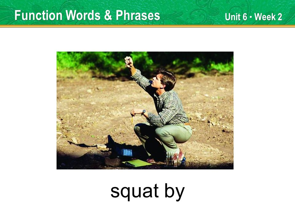 Unit 6 Week 2 squat by Function Words & Phrases
