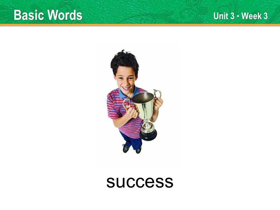 Unit 3 Week 3 success Basic Words
