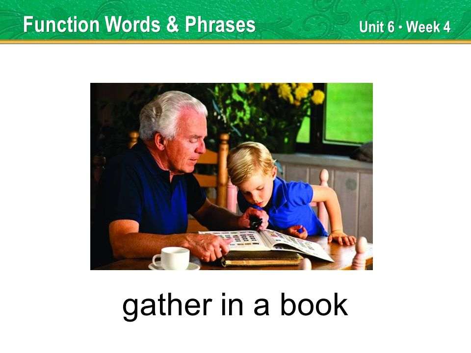 Unit 6 Week 4 gather in a book Function Words & Phrases