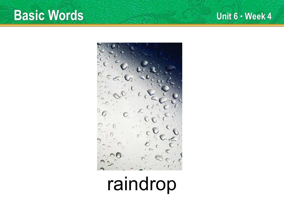 Unit 6 Week 4 raindrop Basic Words
