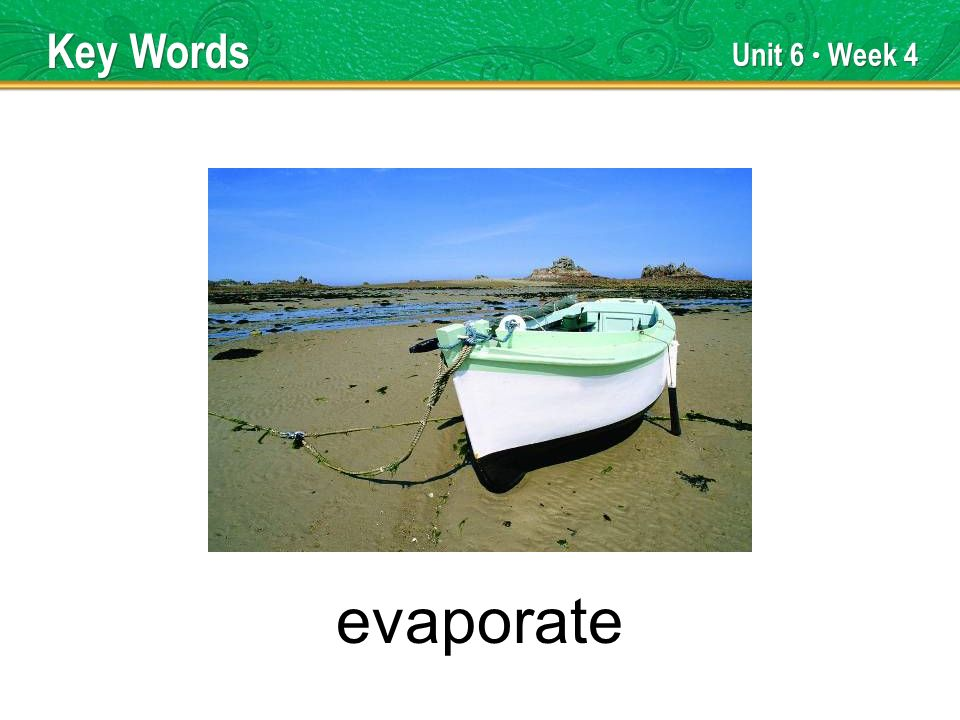 Unit 6 Week 4 evaporate Key Words