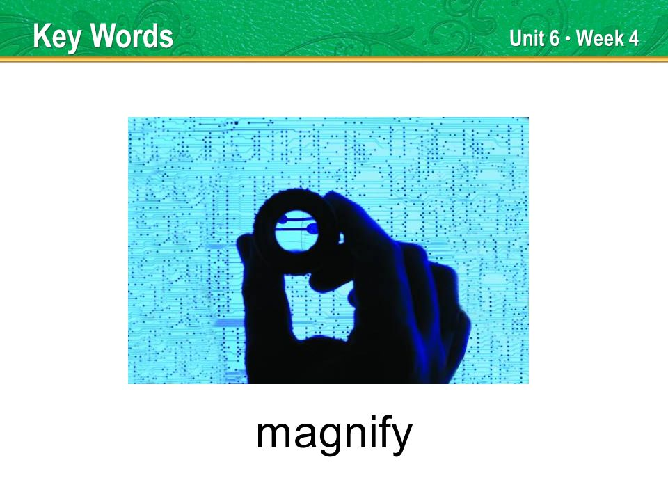 Unit 6 Week 4 magnify Key Words