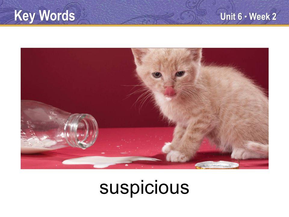 Unit 6 Week 2 suspicious Key Words