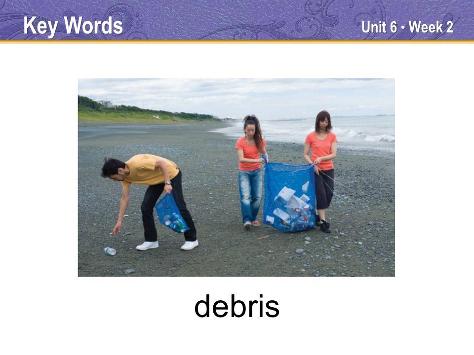 Unit 6 Week 2 debris Key Words