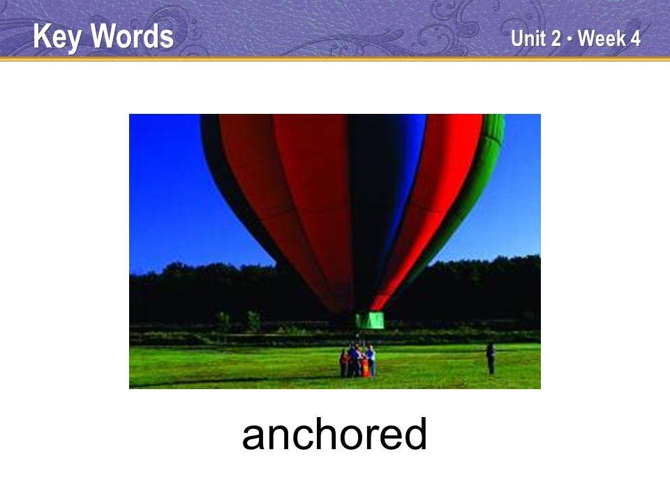 Unit 2 Week 4 anchored Key Words