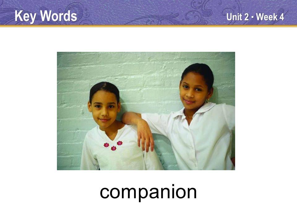 Unit 2 Week 4 companion Key Words