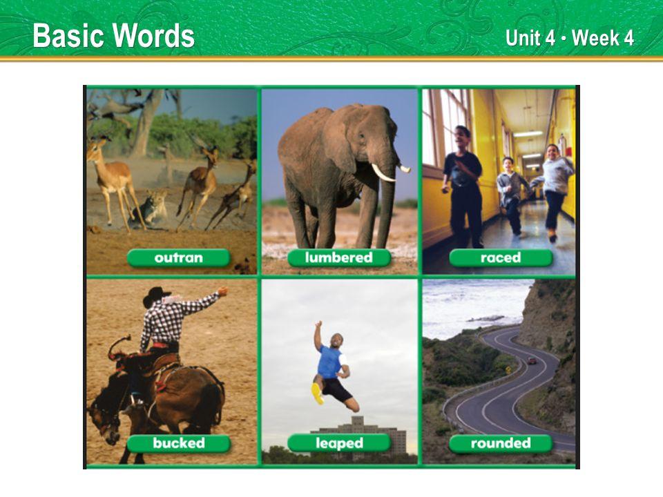Unit 4 Week 4 Basic Words