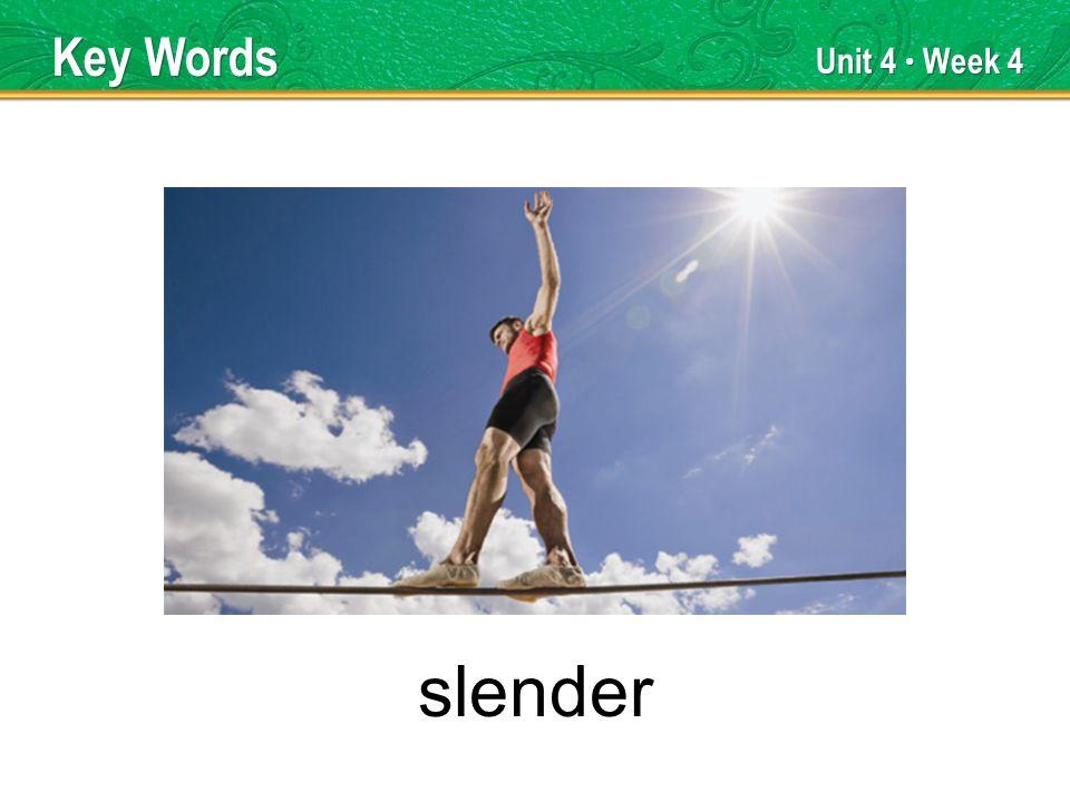 Unit 4 Week 4 slender Key Words