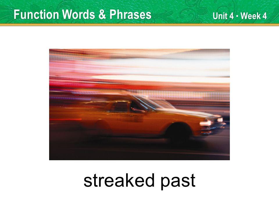 Unit 4 Week 4 streaked past Function Words & Phrases