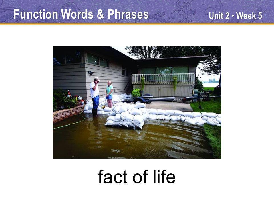 Unit 2 Week 5 fact of life Function Words & Phrases