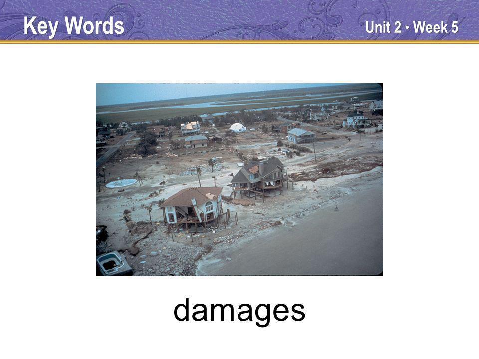 Unit 2 Week 5 damages Key Words