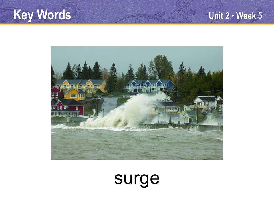 Unit 2 Week 5 surge Key Words