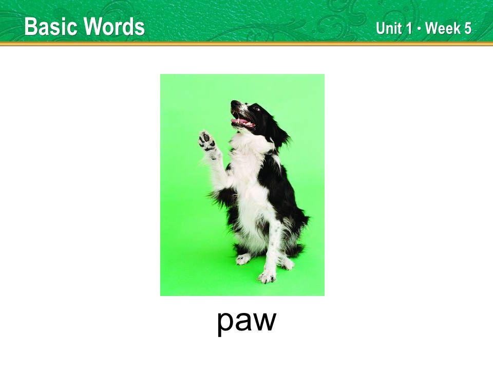 Unit 1 Week 5 paw Basic Words