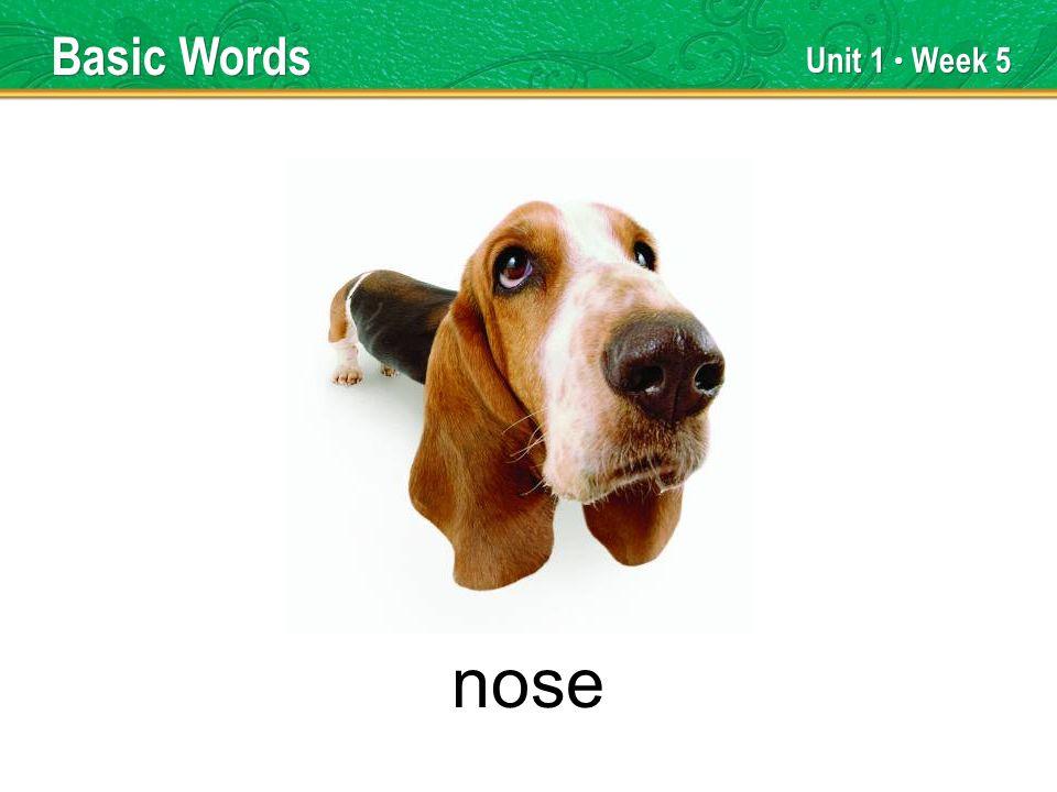 Unit 1 Week 5 nose Basic Words