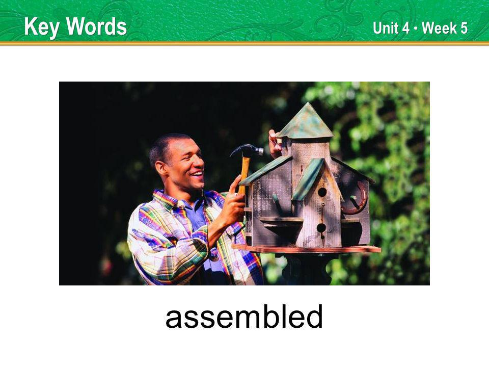 Unit 4 Week 5 assembled Key Words