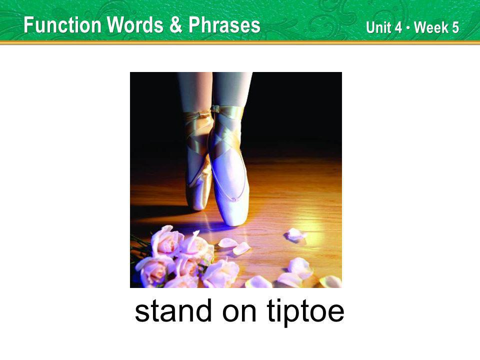 Unit 4 Week 5 stand on tiptoe Function Words & Phrases
