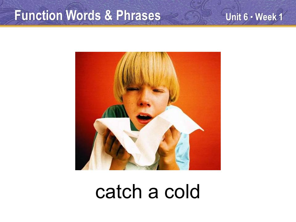Unit 6 Week 1 catch a cold Function Words & Phrases