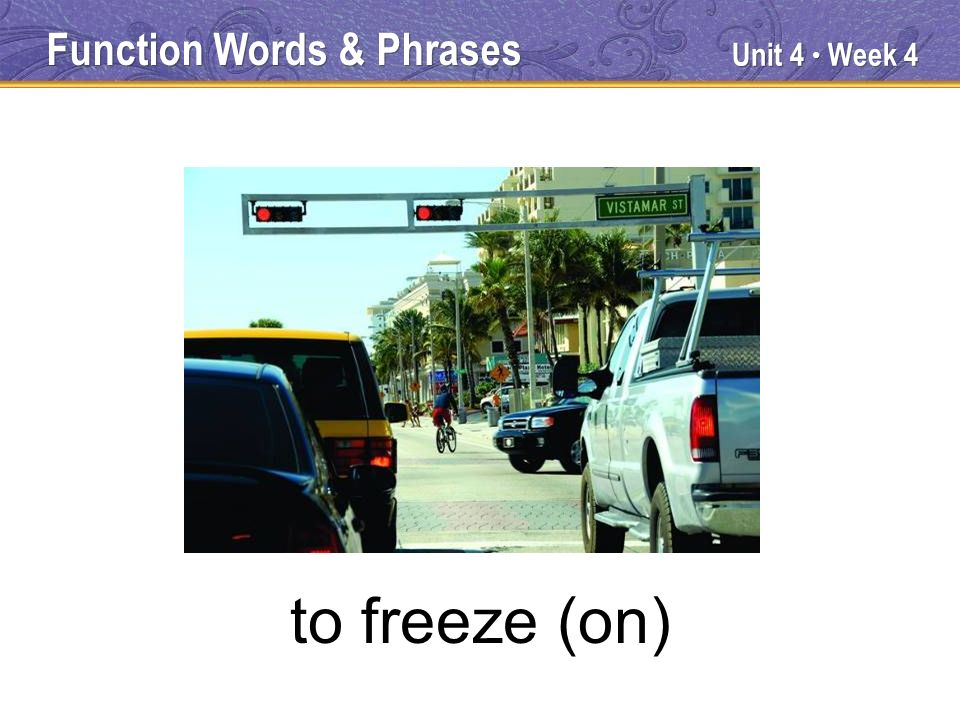 Unit 4 Week 4 to freeze (on) Function Words & Phrases